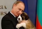 Putin and dog