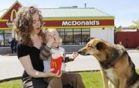 dog at McDs