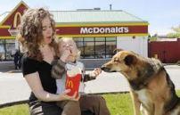 dog at McDs