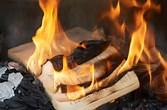 confederate statues book burning